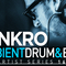 Synkro   ambient drum   bass review