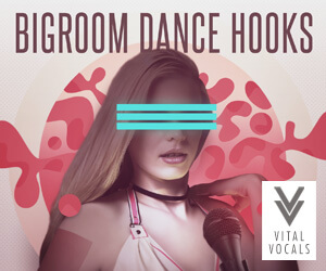 Loopmasters vital vocals bigroom dance hooks 300 x 250
