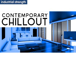 Loopmasters 5 contemporary chillout  hip hop nu soul nu disco live music drums bass pads drumshots production kits 300 x 250