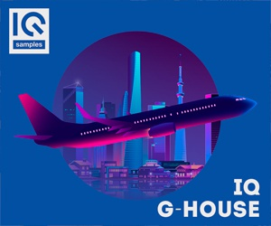 Loopmasters iq samples g house 300 250