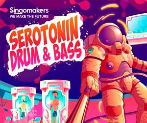 Loopmasters singomakers serotonin drum   bass 300 250