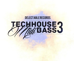Loopmasters techhouse midi bass 03 300