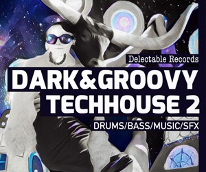 Loopmasters dark and groovy techhouse 02 300