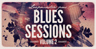 The Blues Sessions Vol2