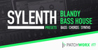 Blandy Bass House Sylenth Presets