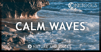 Ct cw nature recording waves 1000x512
