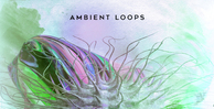 Ambient loops by ak 1000x512