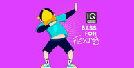 Iq samples bass for flexing 1000 512