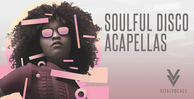 Royalty free vocal samples  disco vocal loops  female sensual vocals  catchy hooks  rectangle