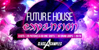 Cas future house expansion1000 512