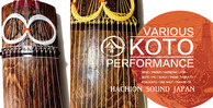 Koto strings japanese instrument banner