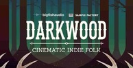 Darkwood 512 big fish audio indie loops