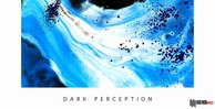 Dark perception engineering samples 512 hip hop loops