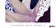 Visionary deep house 3 engineering samples deep house loops 512