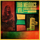 Royalty free dub samples  reggae guitar and melodica loops  dubbed out electric guitar fx  dub guitars